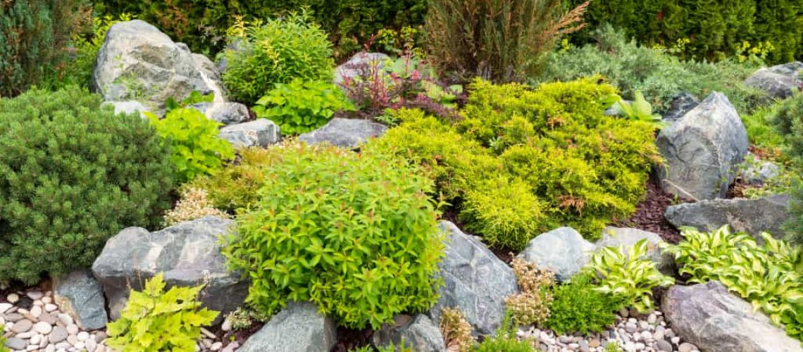 5-landscaping-mistakes-you-should-avoid