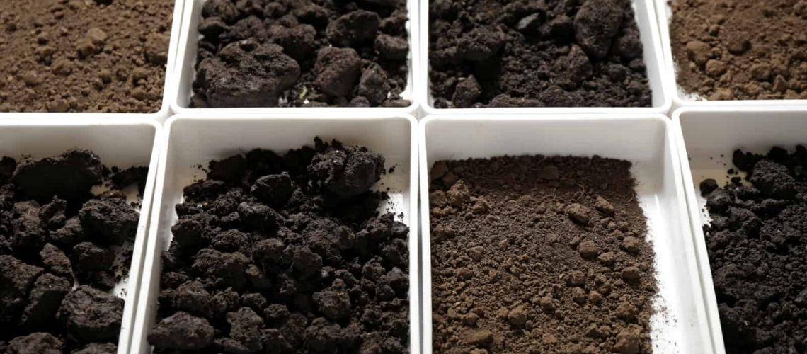 Florida Soil Types - Landscaping in Cape Coral