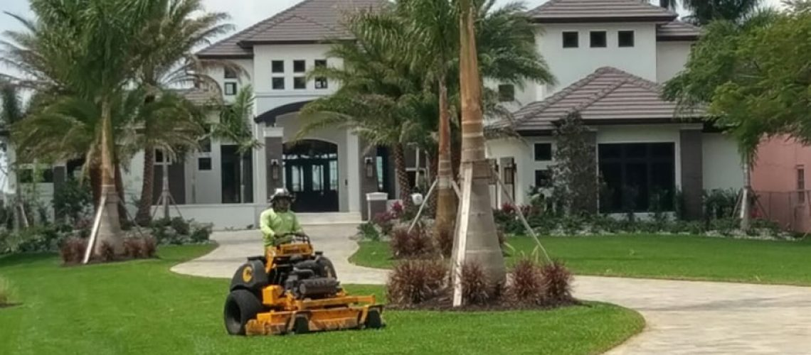 Hire-Professional-Landscaping
