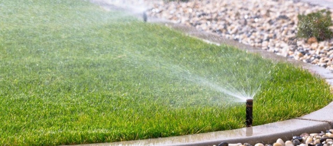 How-to-Hire-the-Best-Lawn-Service-Company-in-Cape-Coral-1024x520