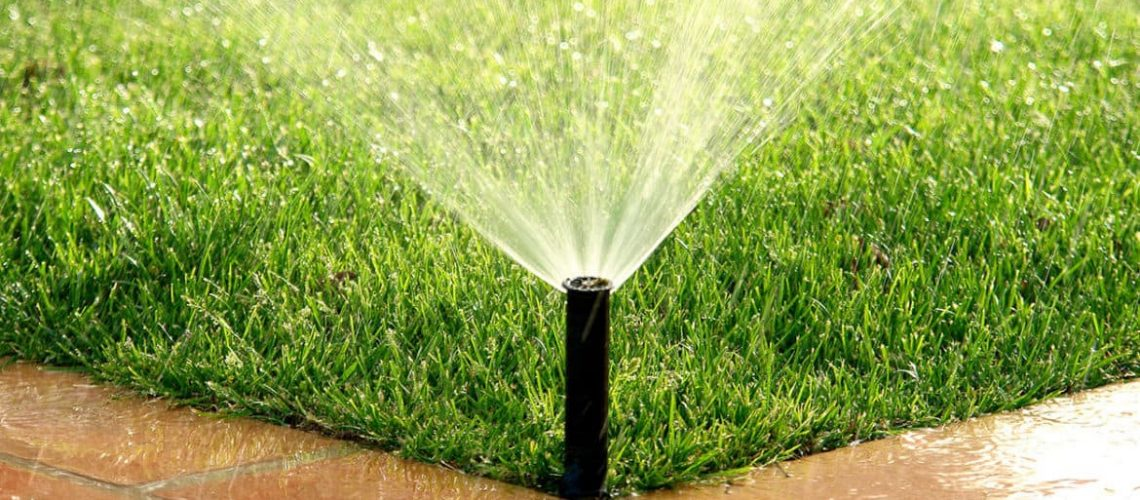 Is-It-Possible-To-Over-Water-Your Lawn-pic