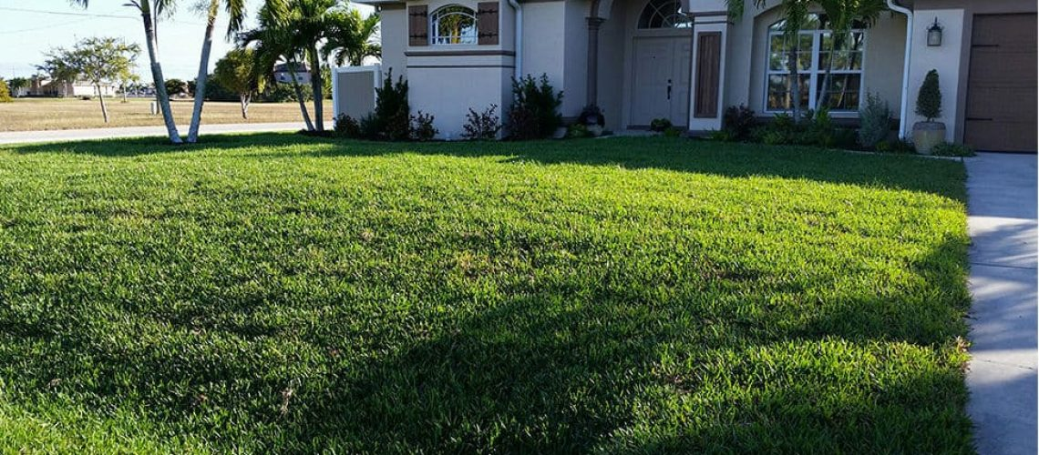 Keeping-Your-Lawn-in-Great-Shape-pic
