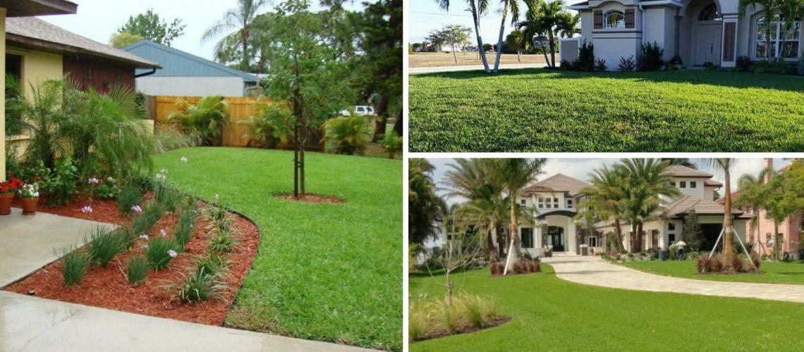 Season By Season Florida Landscape Maintenance