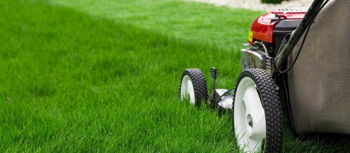 The-Grass-Is-Greener-5-Tips-For-Sprucing-Up-Your-Lawn-1024x520